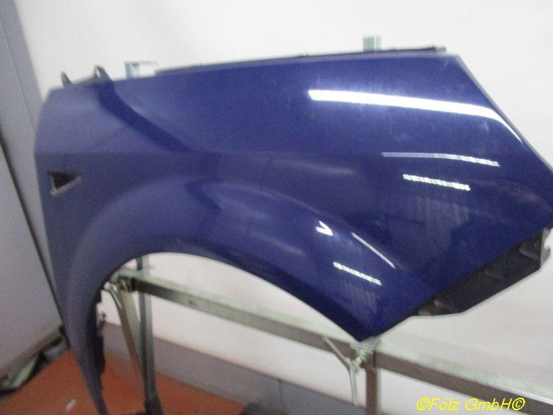 Kotflügel rechts Kratzer siehe BildRENAULT SCENIC II (JM0/1_) 1.5 DCI