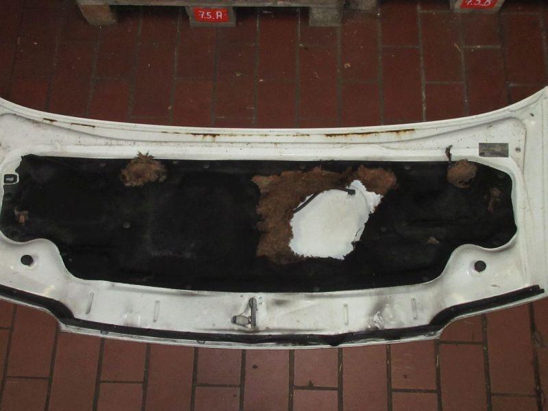 Motorhaube Rost KratzerFIAT DUCATO KASTEN (230L) 2.5 D